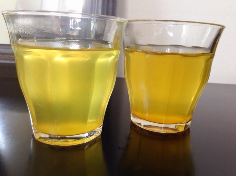 緑を増やそう〜京都に茶畑がもてる〜