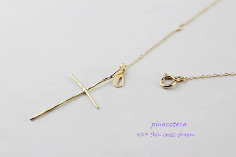 PINa529