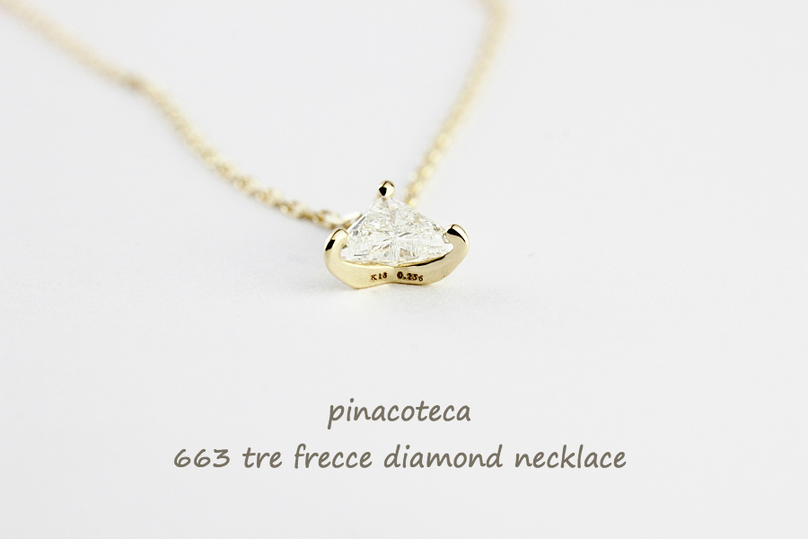 pina663-6